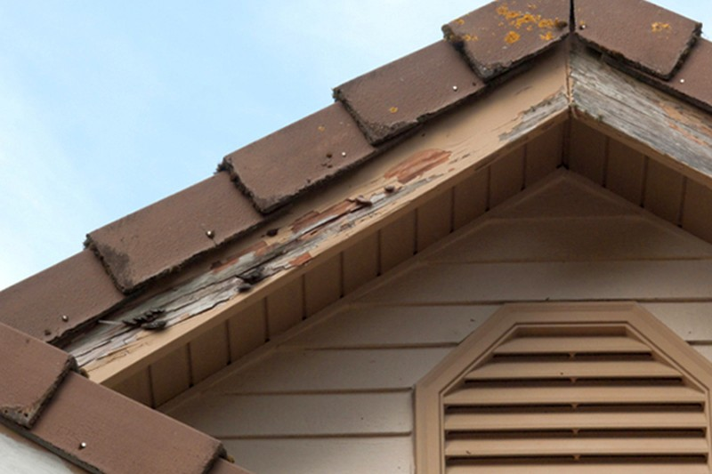 signs-of-termite-damage